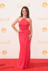 Julia Louis-Dreyfus Carolina Herrera Emmys 2014